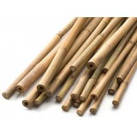 Бамбуковые опоры 20-22 мм